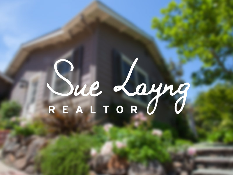 Sue Layng Realtor project